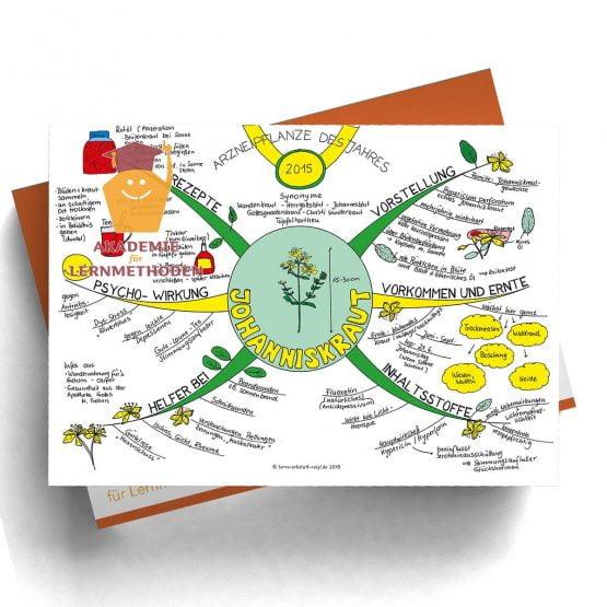 Mindmap Gesund leben- Papierformat