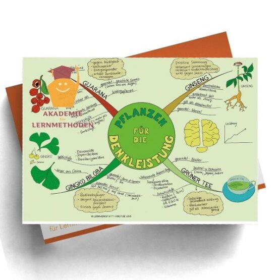Mindmap Pflanzen für die Denkleistung - Papierformat