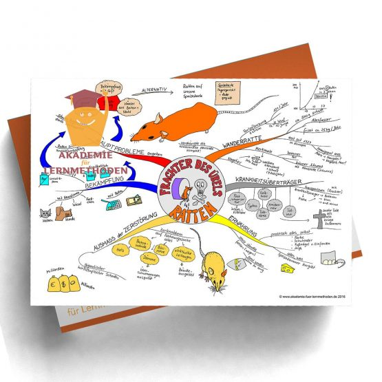 Mindmap Ratten - Papierformat