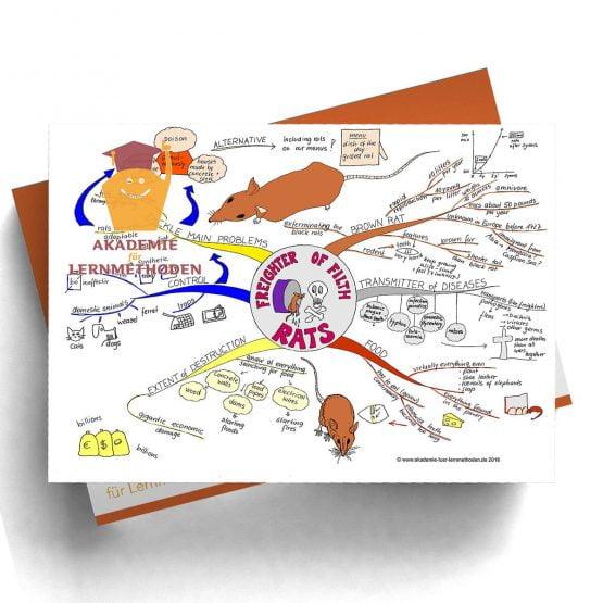 Mindmap Rats (englisch) - Papierformat
