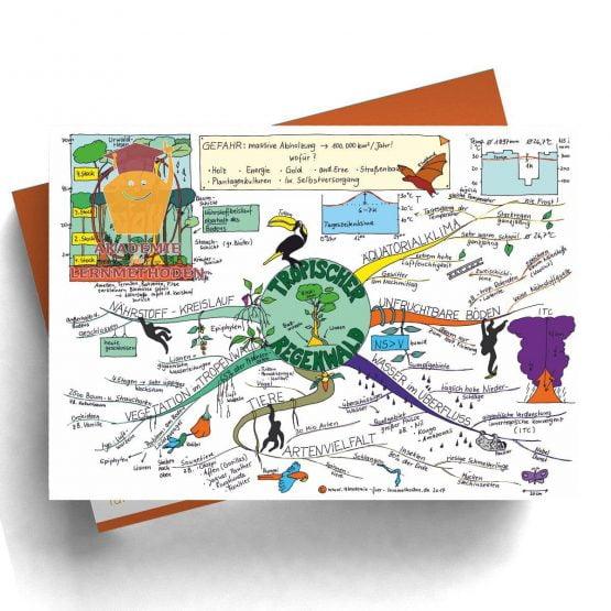 Mind Map zum Thema Tropischer Regenwald