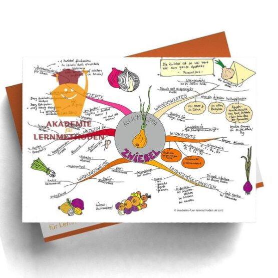 Mindmap zum Thema Zwiebel in Farbe