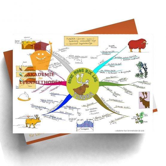 Mindmap Tundra - Papierformat