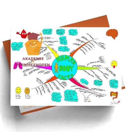 Mindmap zum Thema human-body-facts in Farbe
