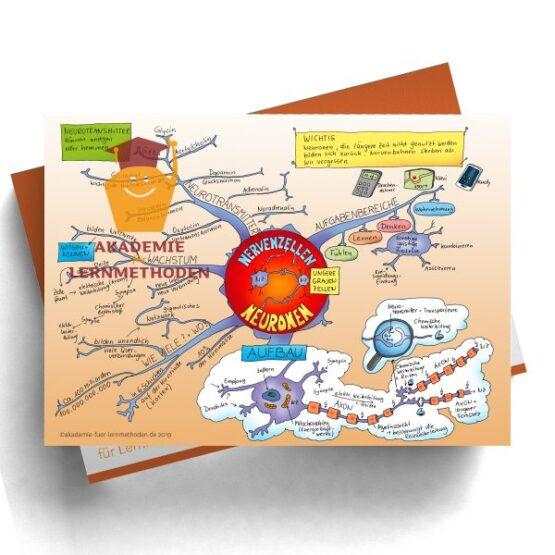 Mindmap zum Thema Nervenzellen