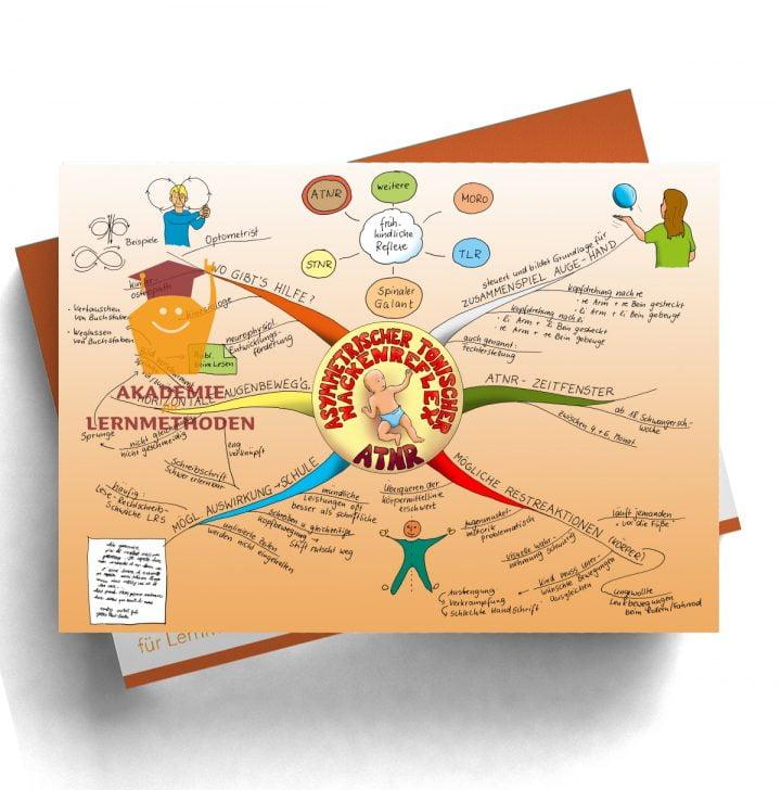 Mindmap zum Thema Reflex ATNR