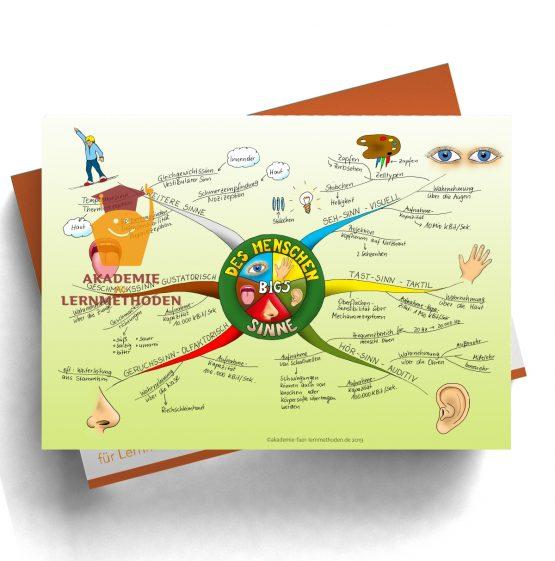 Mindmap zum Thema Sinne des Menschens in Farbe