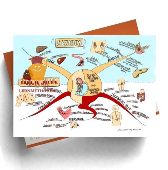 Mindmap zum Thema Aszides