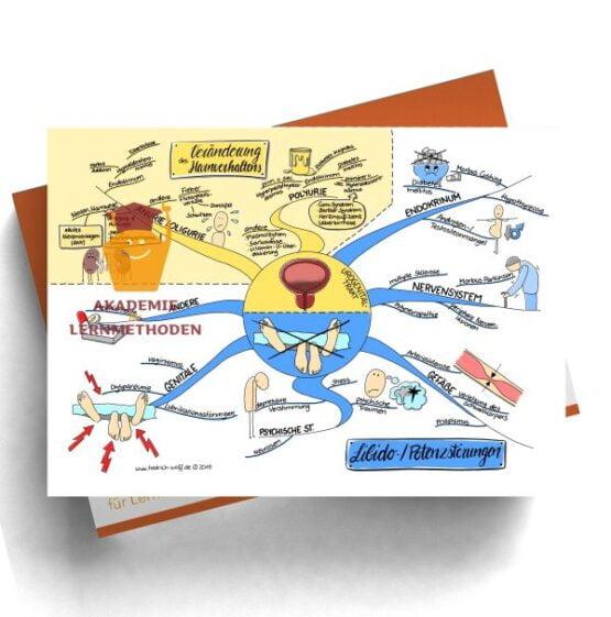 Mindmap zum Thema Veränderungen des Harnverhaltens und Libido -Potenzstörungen