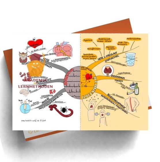 Mindmap zum Thema Bradykardie - Extrasystolie