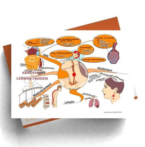 Mindmap zum Thema Halsvenenstau