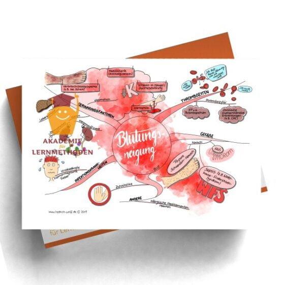 Mindmap zum Thema Blutungsneigung