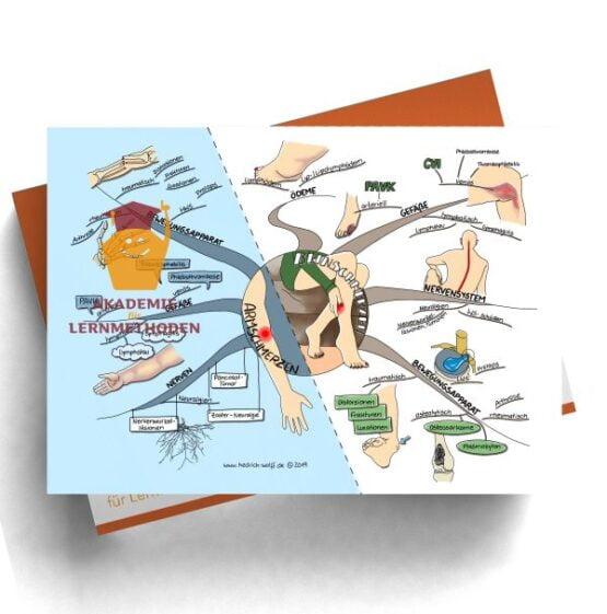 Mindmap zum Thema Armschmerzen - Beinschmerzen