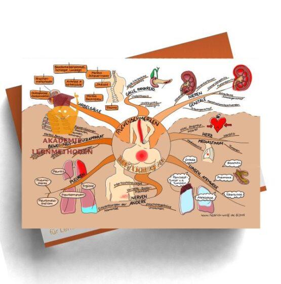 Mindmap zum Thema Rückenschmerzen - Thoraxschmerzen