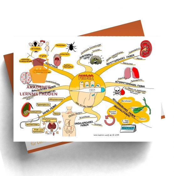 Mindmap zum Thema Fieber nach Art des Fiebers