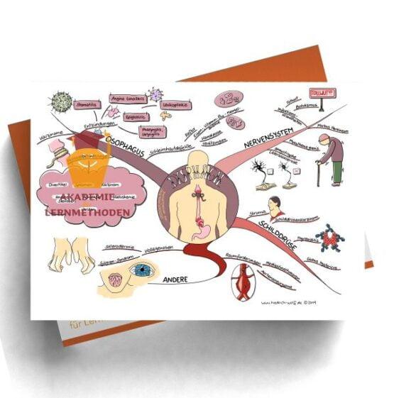 Mindmap zum Thema Dysphagie