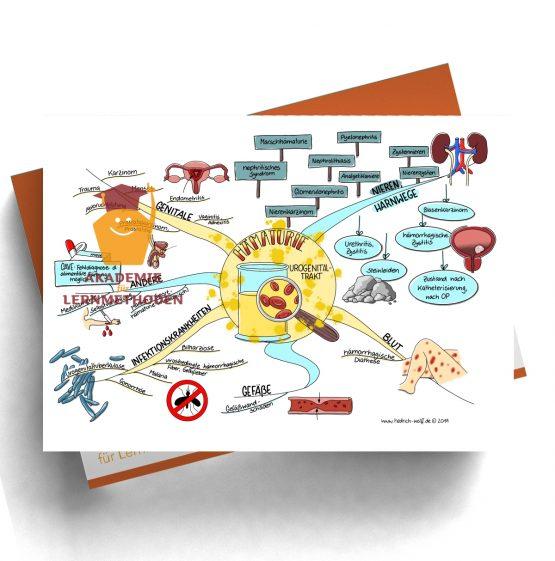 Mindmap zum Thema Hämaturie