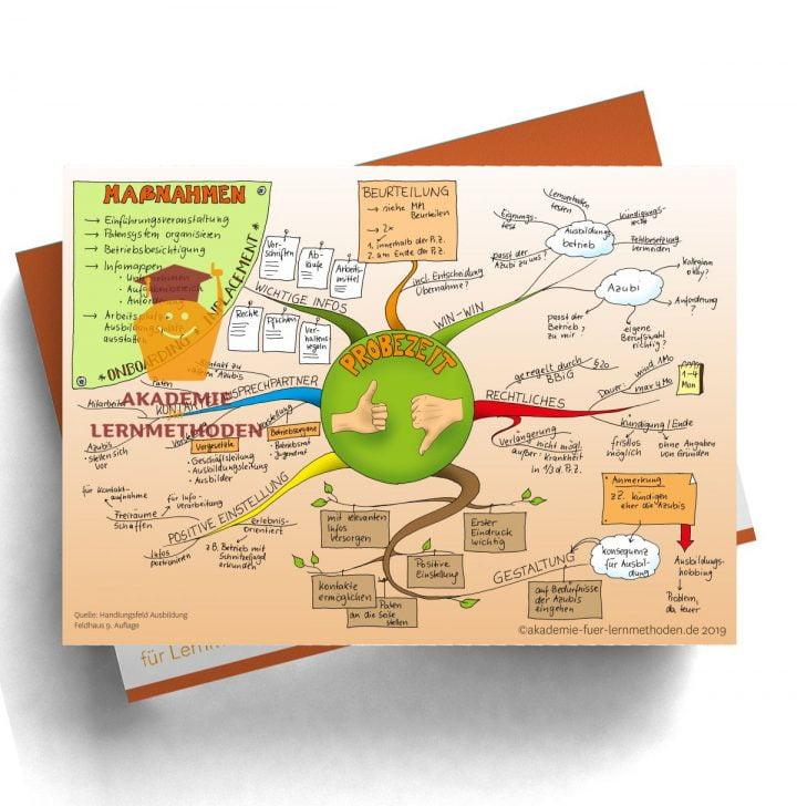 Mindmap für die AEVO über die Probezeit
