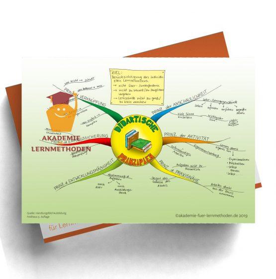 Mindmap für die AEVO über die didaktischen Prinzipien