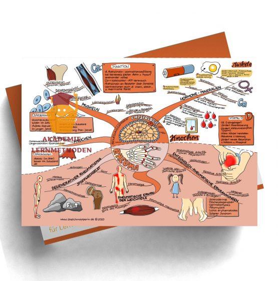 Mindmap zum Thema Gefäße Physiologie, Rheuma für den med. Heilpraktiker