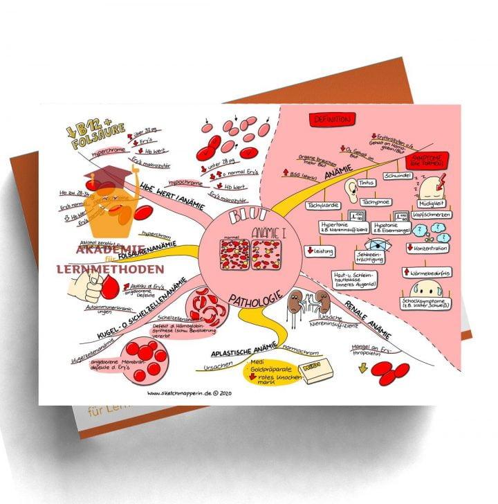 Mindmap zum Thema Blut Pathologie Anämie 1 für den med. Heilpraktiker