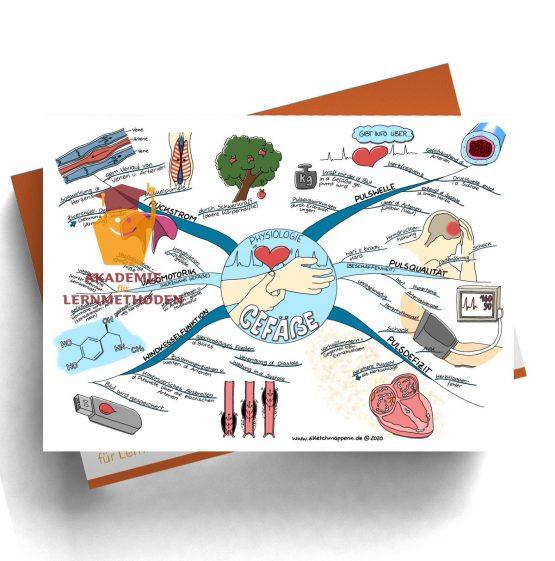 Mindmap zum Thema Gefäße Physiologie für den med. Heilpraktiker