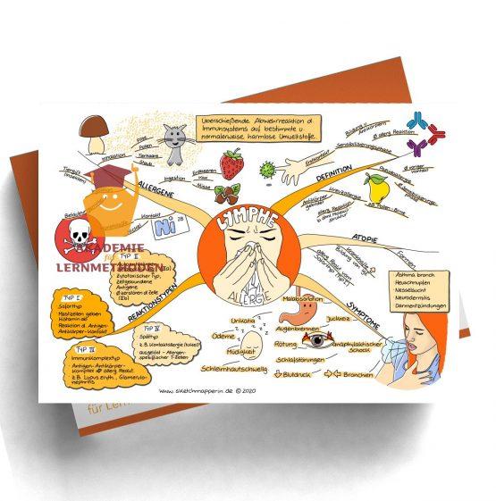 Mindmap zum Thema Lymphe_Allergie für den med. Heilpraktiker