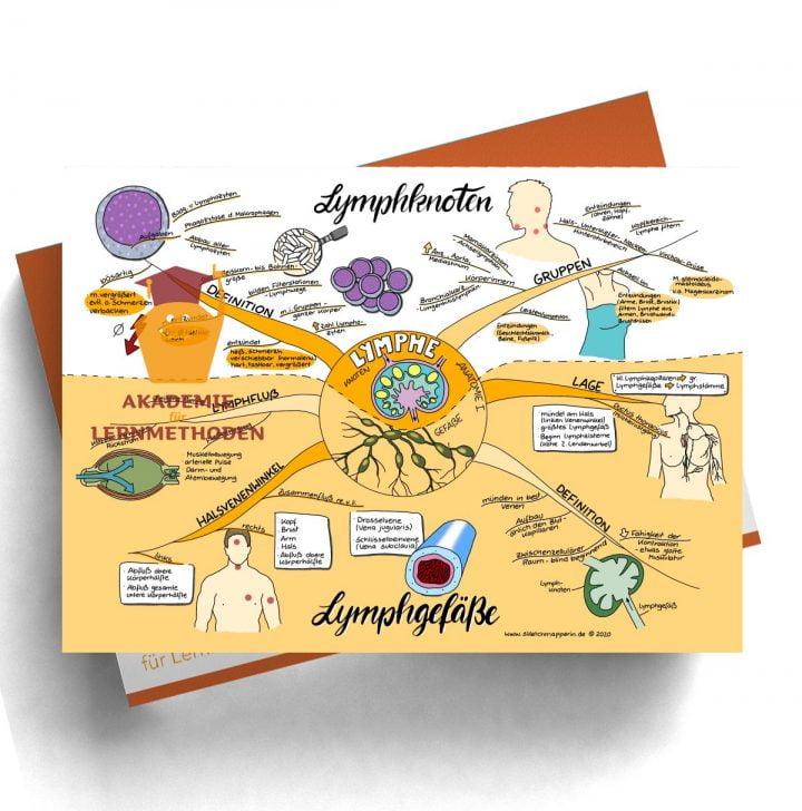 Mindmap zum Thema Lymphe_Anatomie I für den med. Heilpraktiker