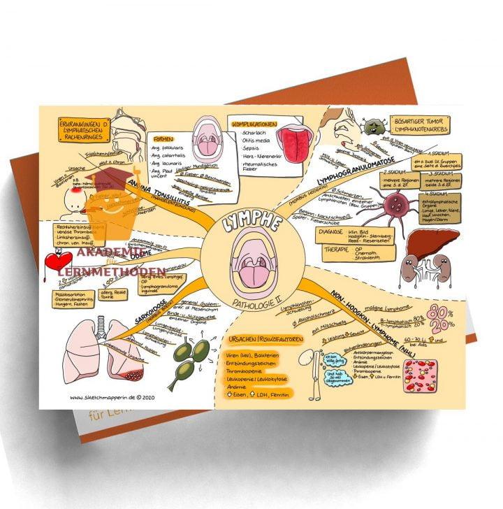 Mindmap zum Thema Lymphe_Pathologie II für den med. Heilpraktiker