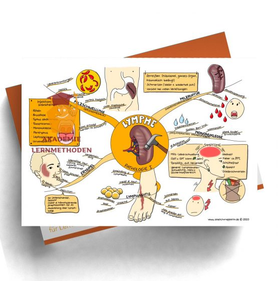 Mindmap zum Thema Lymphe_Pathologie I für den med. Heilpraktiker