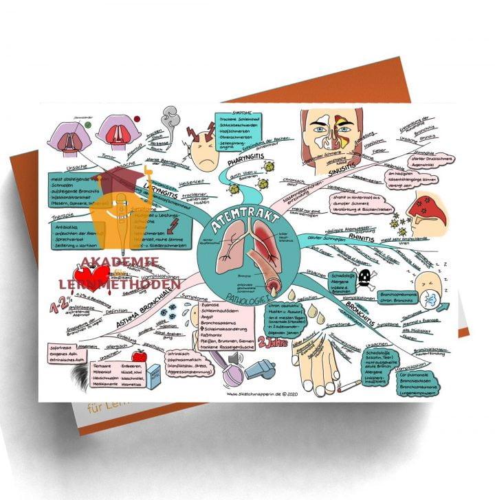 Mindmap für den medizinischen Heilpraktiker zum Thema Atemtrakt Patologie I