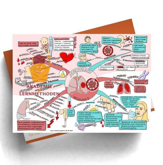 Mindmap für den medizinischen Heilpraktiker zum Thema Atemtrakt Pathologie II