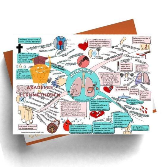 Mindmap für den medizinischen Heilpraktiker zum Thema Atemtrakt Pathologie III