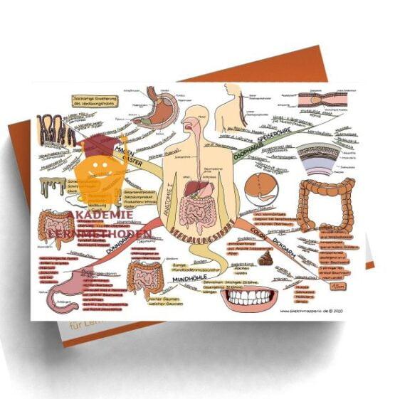 Mindmap 43 Heilpraktiker med. Verdauungstrakt - Anatomie 1