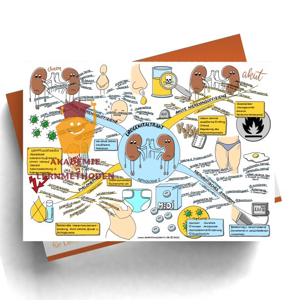 Mindmap HP med. Urogenitaltrakt - Pathologie 1