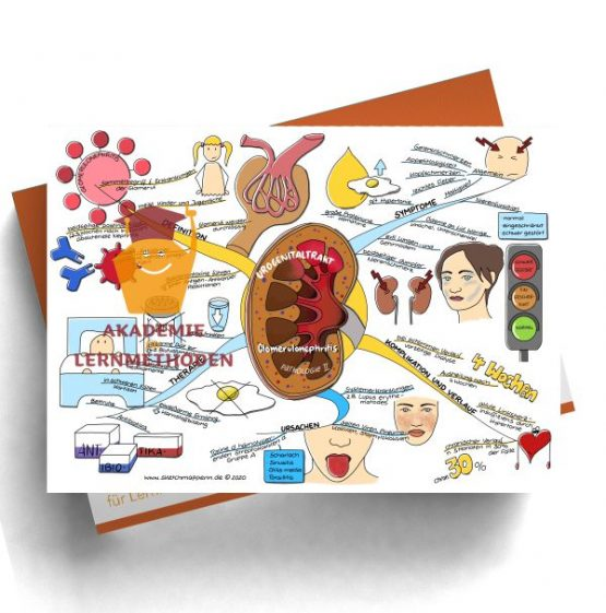 Mindmap HP med. Urogenitaltrakt - Pathologie 2
