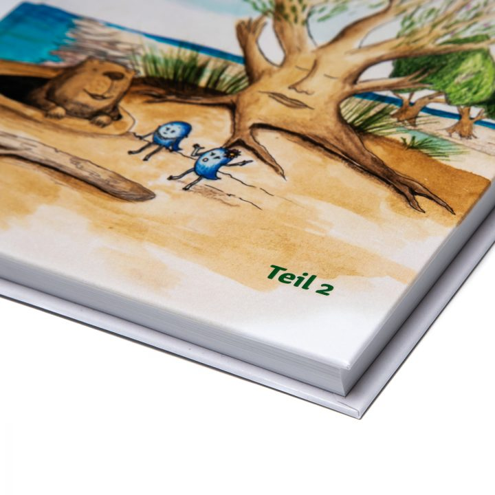 Tommy Tropf Band 2 ein Kinderroman mit dem Wasserkreislauf
