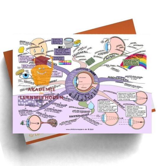 Mindmaps zum Thema Sinnesorgane-Auge für den med. Heilpraktiker