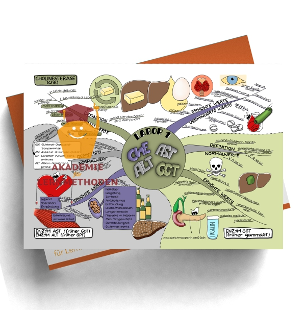Mindmap zum Thema Labor 1