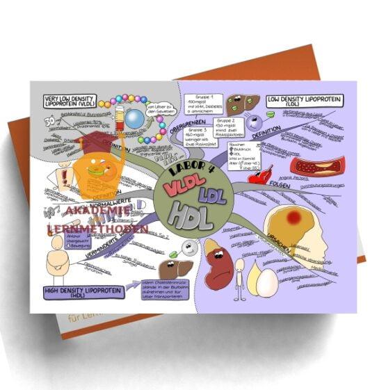 Mindmap zum Thema Labor 4
