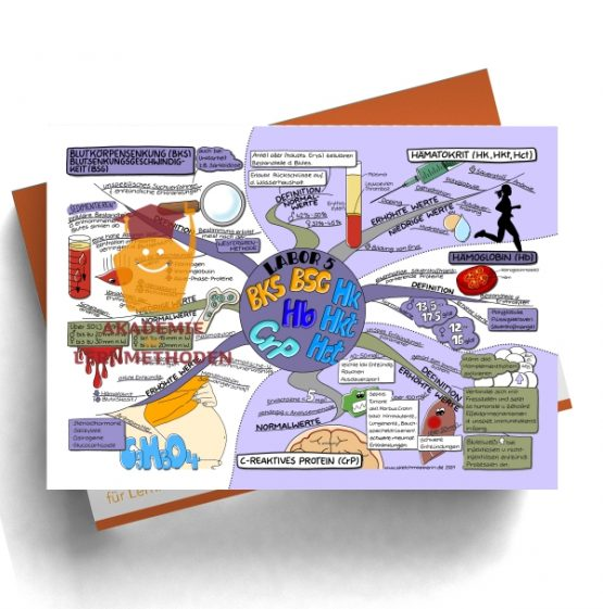 Mindmap zum Thema Labor 5