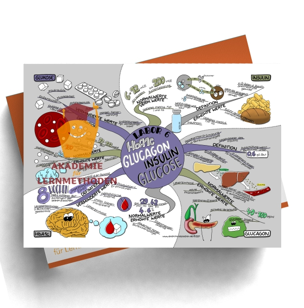 Mindmap zum Thema Labor 6