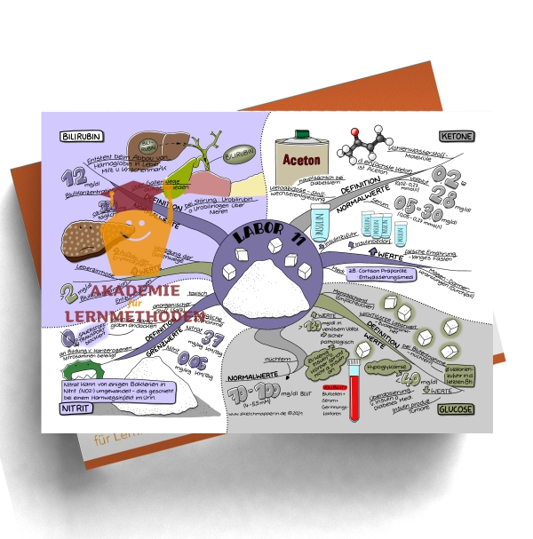 Mindmap zum Thema Labor 11