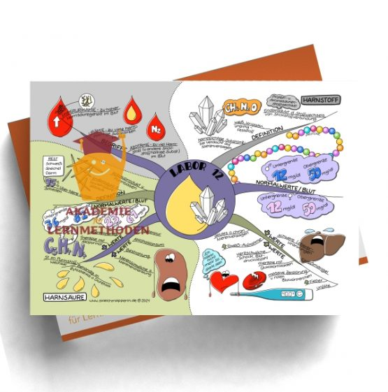 Mindmap zum Thema Labor 12