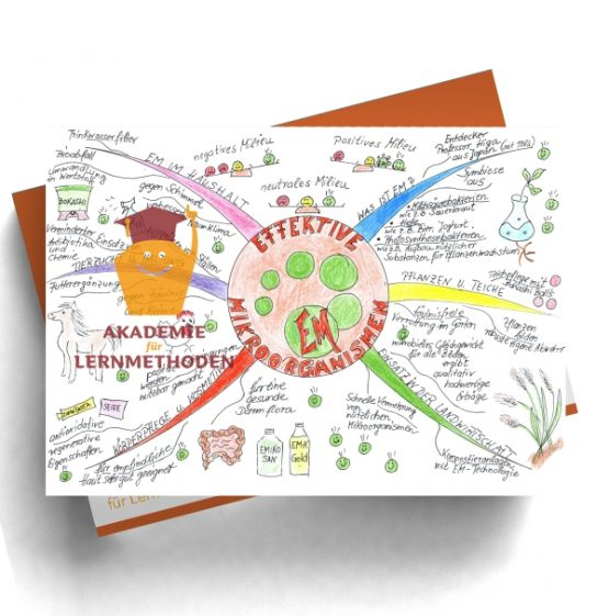 Mindmap zum Thema Effektive-Mirkoorganismen