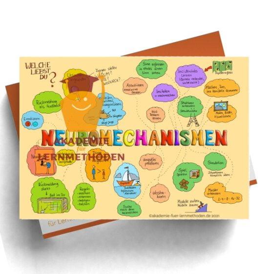 KAWA Neuromechanismus in Farbe