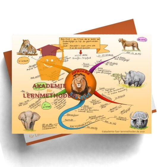 Mindmap zum Thema Afrikas Big Five