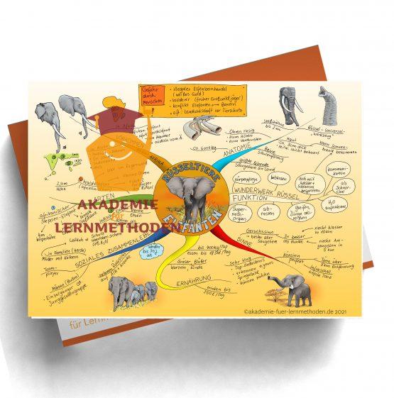 Mindmap zum Thema Elefanten.