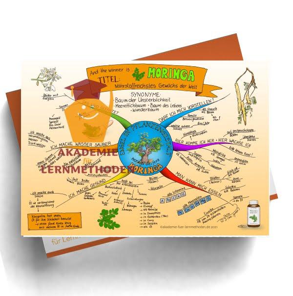 """Mindmap zum Thema Moringa """"Engel in Pflanzengestalt"""""""